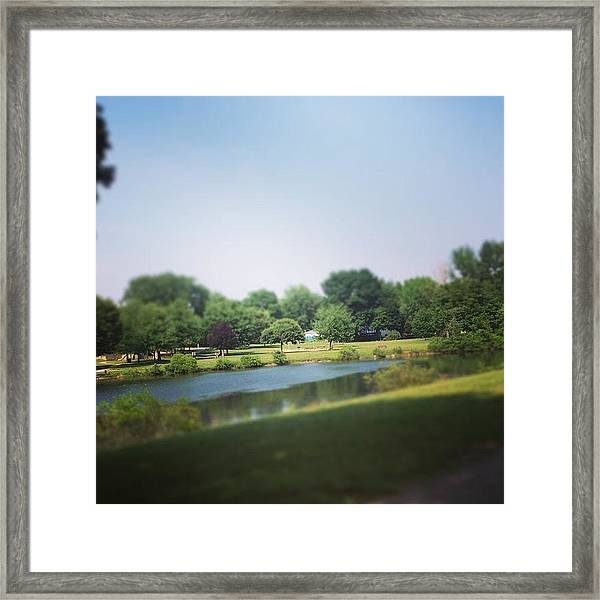 Perfect Park Afternoon Framed Print