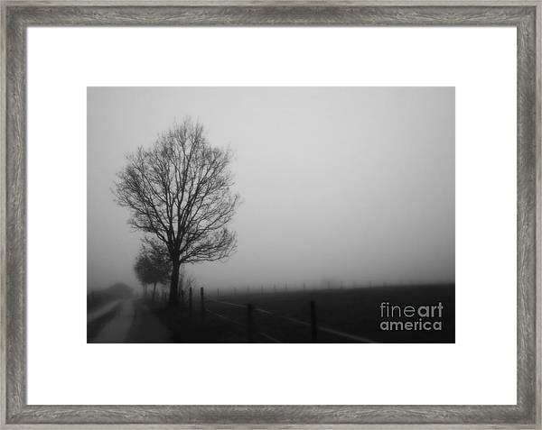 Perfect Sense II Framed Print