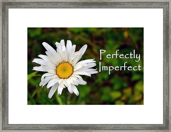Perfectly Imperfect Daisy Flower Framed Print