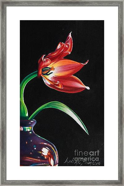 Perfumed Brilliance Framed Print by Arlene Steinberg