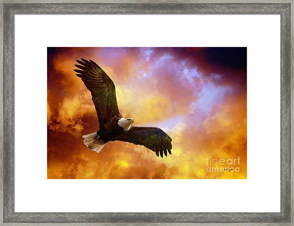 Framed Print featuring the photograph Perseverance by Lois Bryan