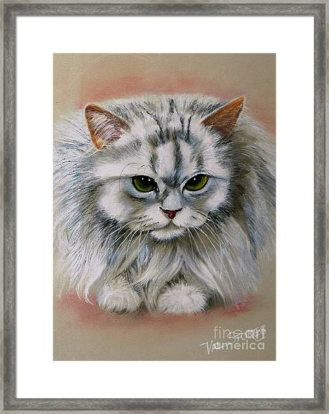 Persian Beauty Framed Print by Val Stokes
