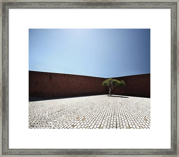 Perspective View On Square With Tree Framed Print by Stanislaw Pytel
