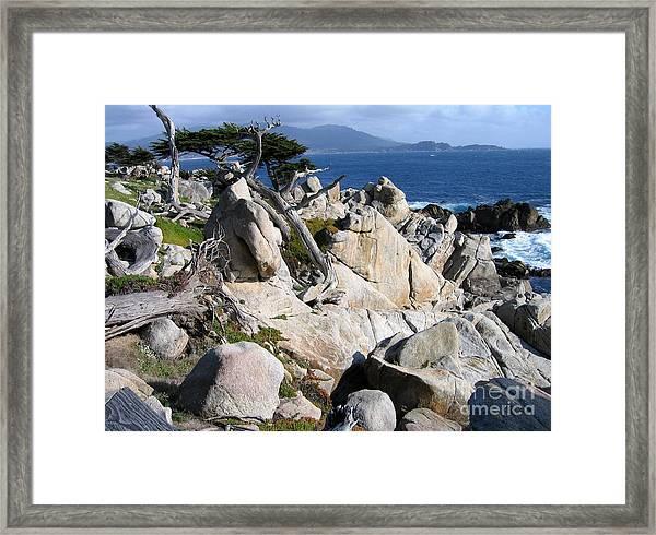 Pescadero Point Framed Print