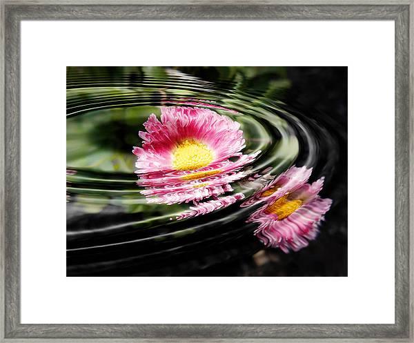 Petal Ripple Framed Print