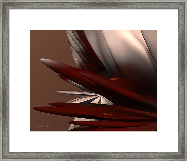 Petals And Stone 2 Framed Print