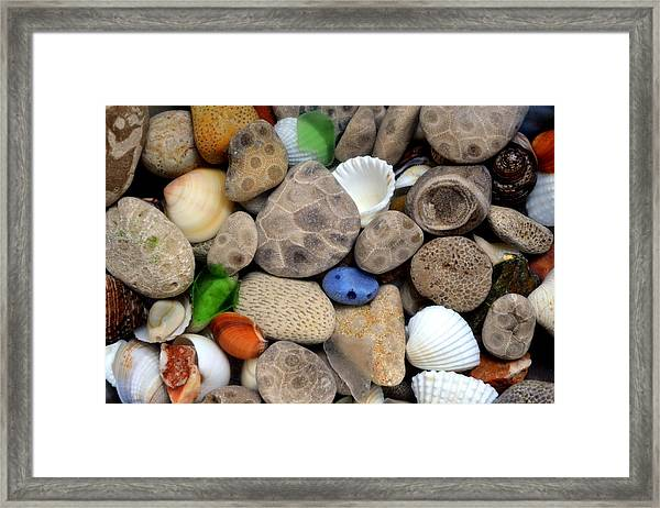 Petoskey Stones Lll Framed Print