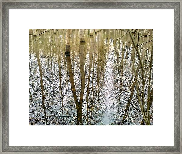 Peupliers Framed Print