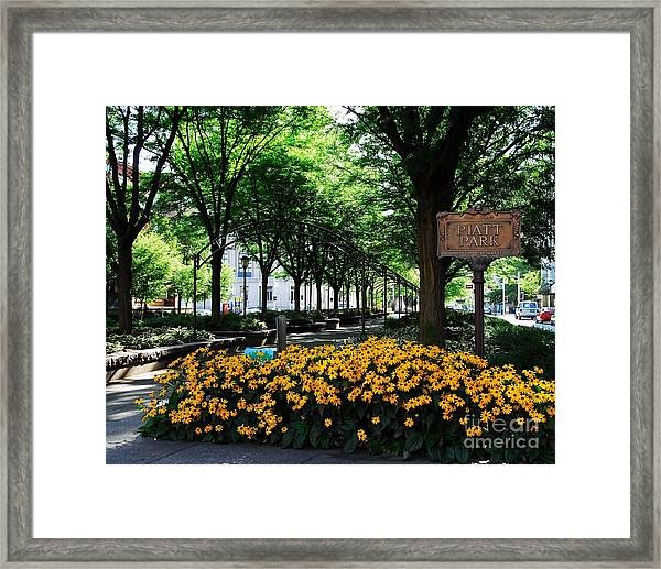 Framed Print featuring the photograph Piatt Park 1 by Mel Steinhauer