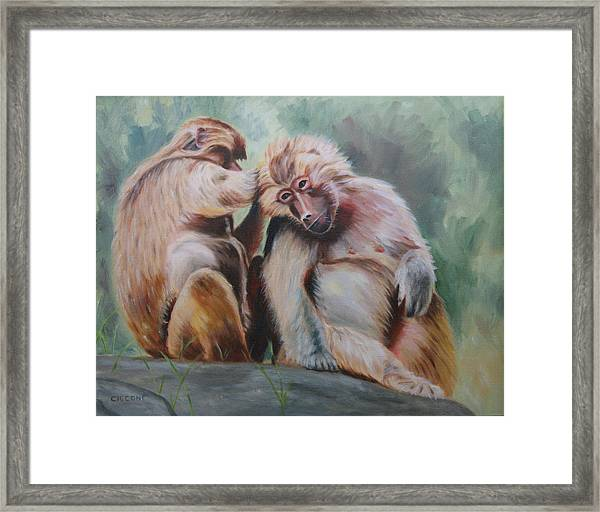 Pick Your Friends Carefully  Framed Print