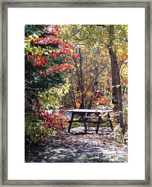 Framed Print featuring the photograph Picnic Memories by Gigi Dequanne