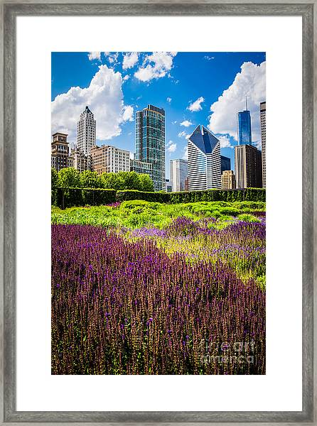 Picture Of Chicago Skyline With Lurie Garden Flowers Framed Print