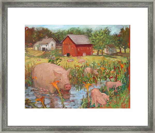 Pigs And Lilies Framed Print