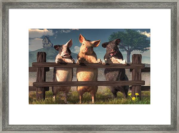 Pigs On A Fence Framed Print