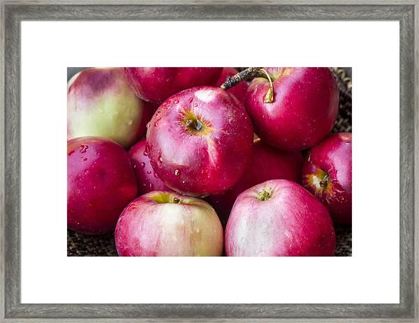 Pile Of Apples Framed Print