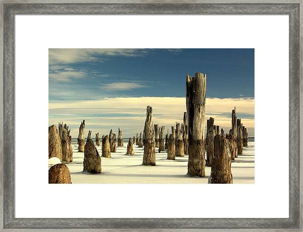 pilings II Framed Print