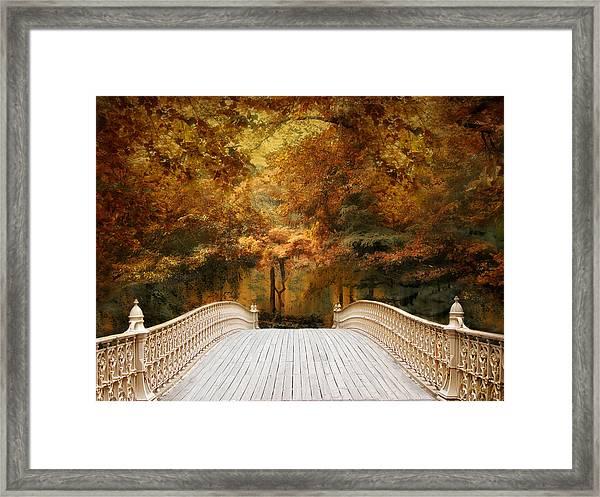 Pine Bank Autumn Framed Print