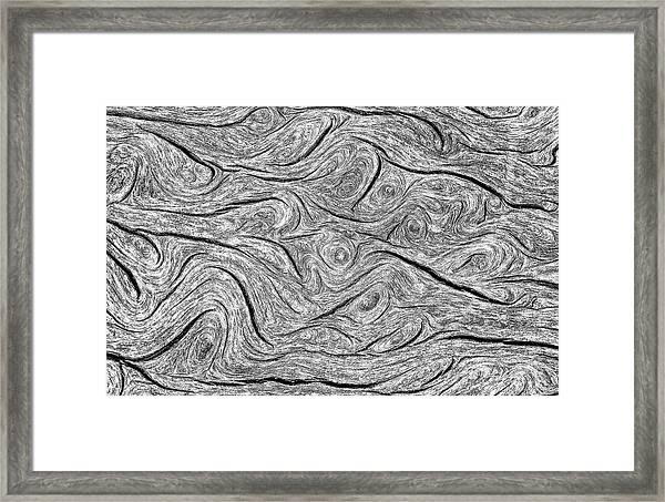 Pine Bark Abstract Framed Print