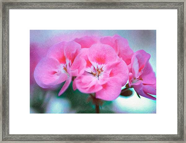 Framed Print featuring the photograph Pink Beauty by Garvin Hunter