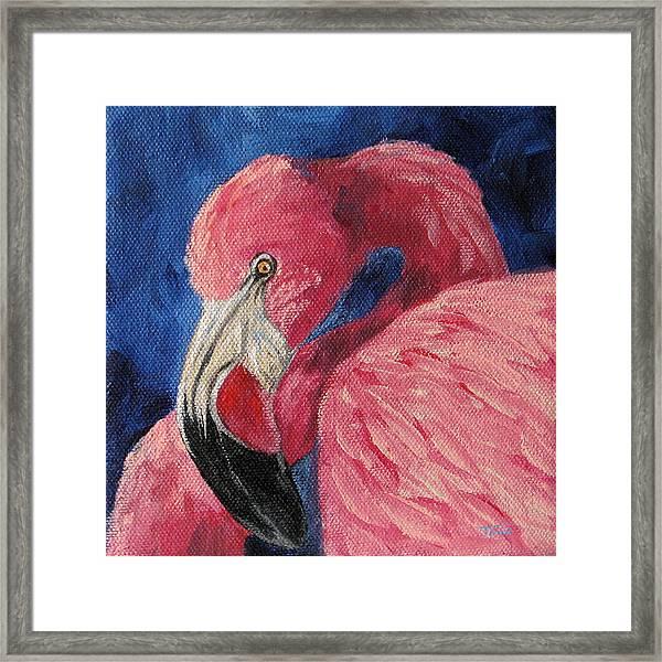 Pink Flamingo Iv Framed Print by Torrie Smiley