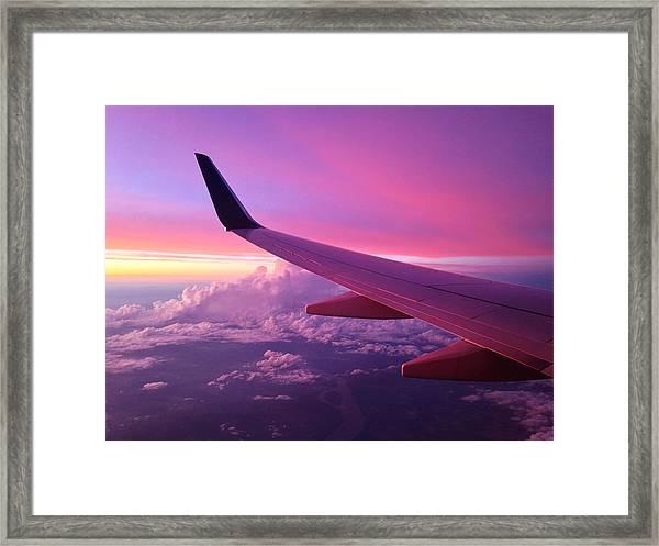 Pink Flight Framed Print