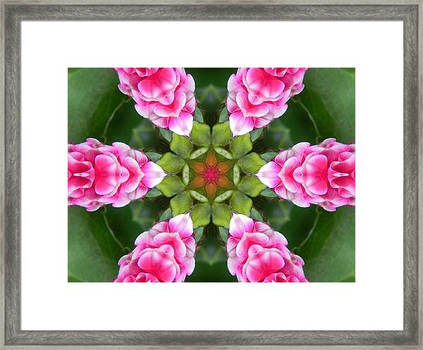 Pink Flower Star Mandala Framed Print