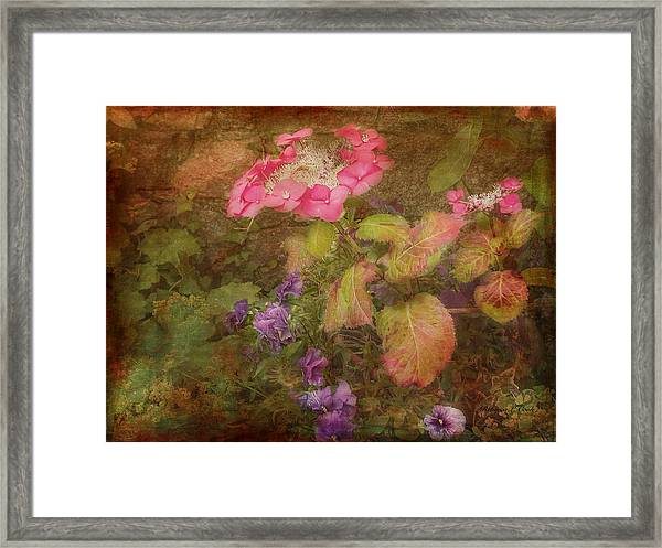 Pink Hydrangea And Purple Pansies Framed Print