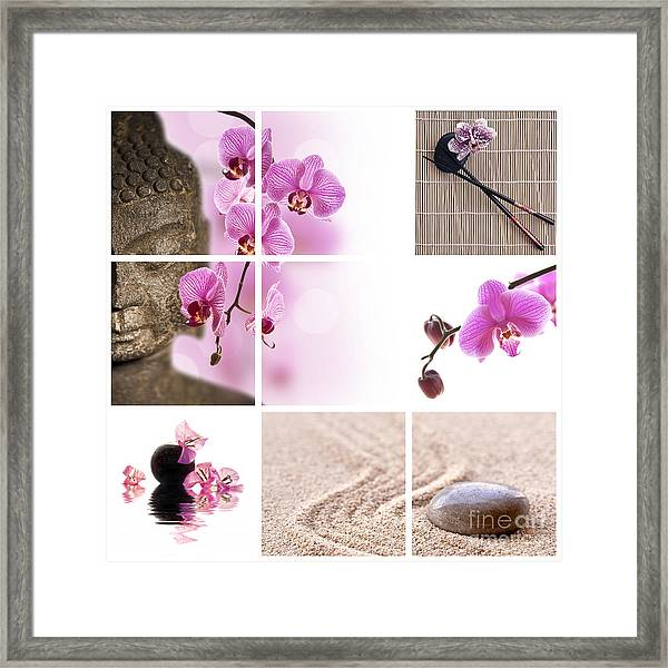 Pink Orchid And Buddha Collage Framed Print