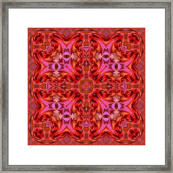 Pink Perfection No 1 Framed Print