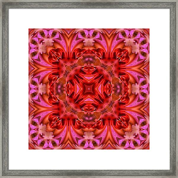 Pink Perfection No 2 Framed Print