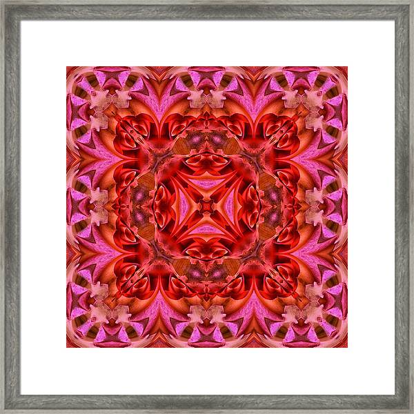 Pink Perfection No 3 Framed Print