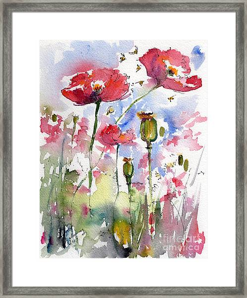 Pink Poppies Pods And Bees Watercolor By Ginette Framed Print
