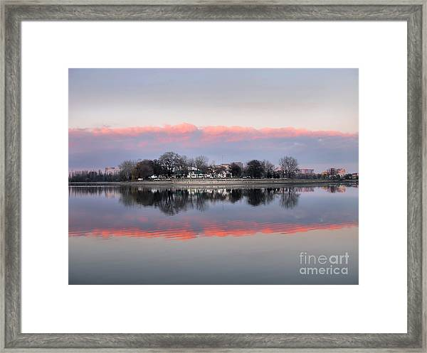 Pink Reflection  Framed Print