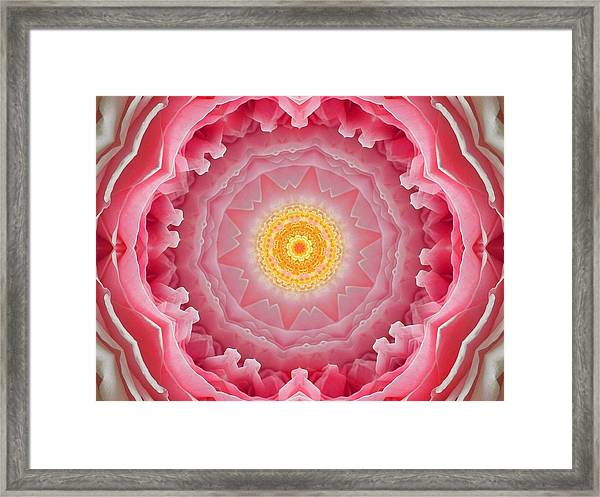 Pink Rose Sunshine Mandala Framed Print