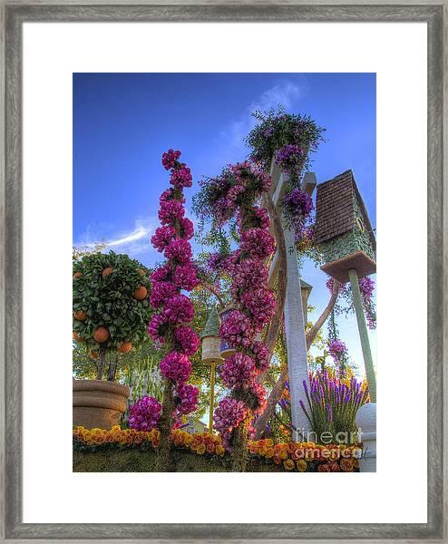 Pink Spirals Of Roses Framed Print