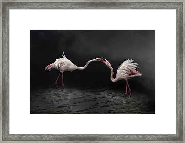 Pink Strategy Framed Print by Martine Benezech