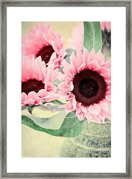 Pink Sunflowers Framed Print