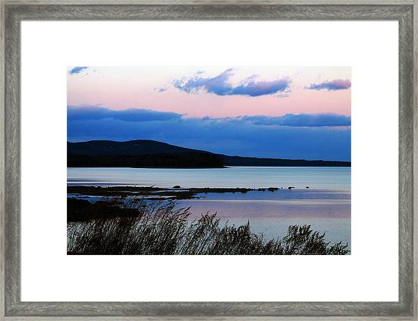 Pink Sunset In Kingston Framed Print