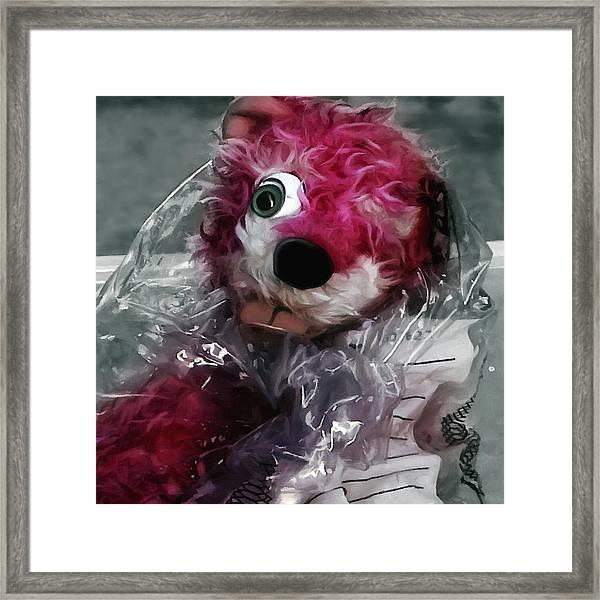 Pink Teddy Bear In Evidence Bag @ Tv Serie Breaking Bad Framed Print