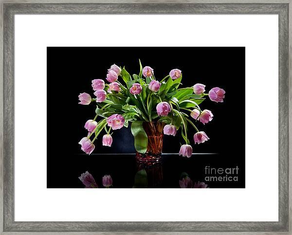 Pink Tulips Bouquet Sag In Glass Vase On Black  Framed Print
