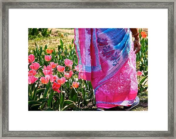 Pinks Framed Print