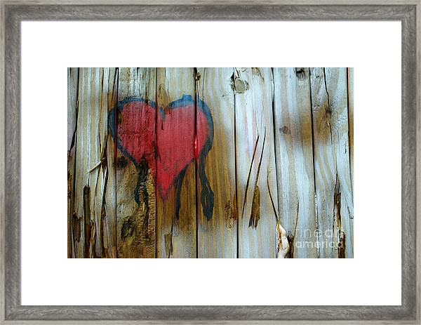 Framed Print featuring the photograph Pinocchio's Heart by Glenda Wright