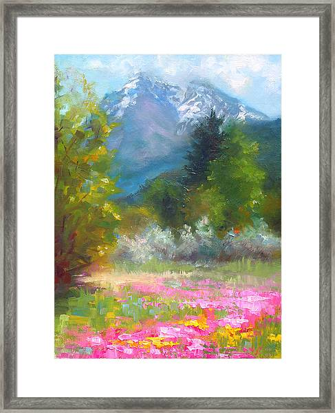 Pioneer Peaking - Flowers And Mountain In Alaska Framed Print