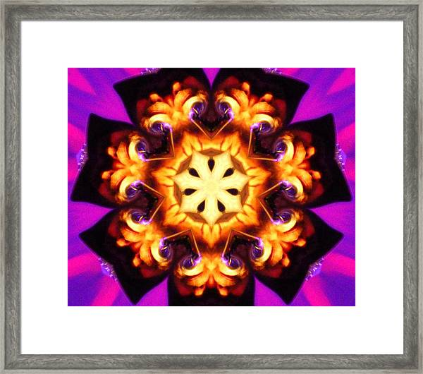Framed Print featuring the photograph Pizzaz by Gigi Dequanne