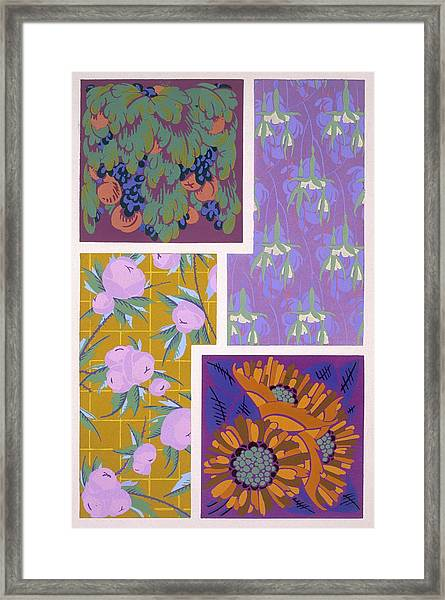 Plate 11, From Forms And Colours, C.1930 Framed Print