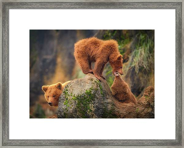 Playing In The Heights Framed Print by Sergio Saavedra Ruiz