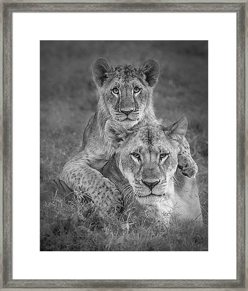 Playtime With Mama! Framed Print