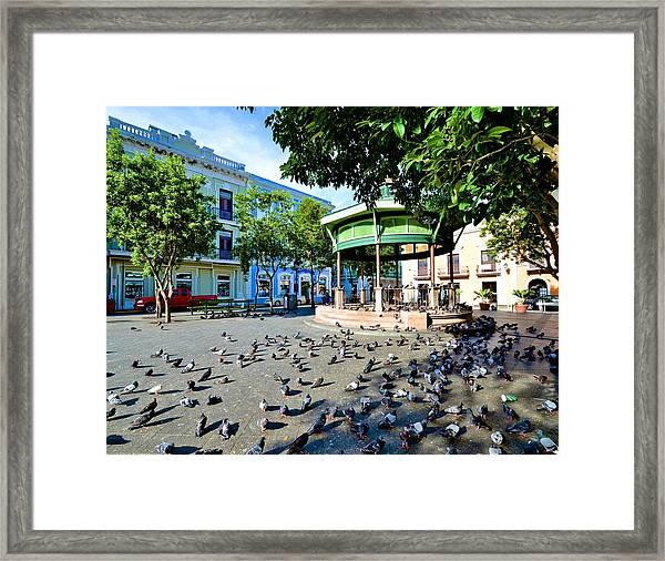 Plaza De Armas Framed Print