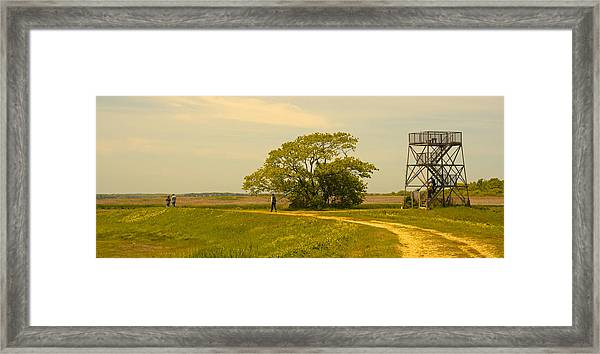 Plum Island Summer Afternoon Framed Print