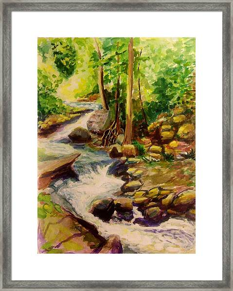 Pocantica River Rapids Framed Print